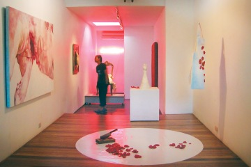 Swine, at Green Papaya Art Projects 2004
